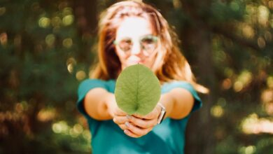 Studia W Kierunku Modyfikacji Otaczającego Środowiska I Zapewnienia Warunków Zrównoważonego Rozwoju
